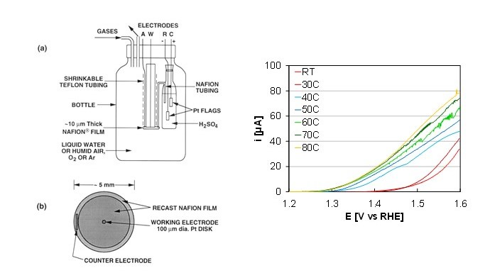 Microelectrode schematic and graph